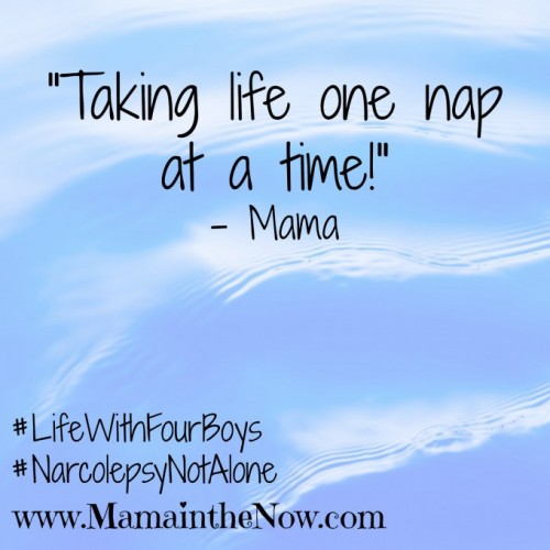 """Taking Life One Nap at a Time!"""