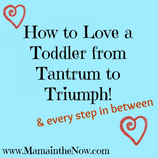 How to Love a Toddler from Tantrum to Triumph! & every step in between