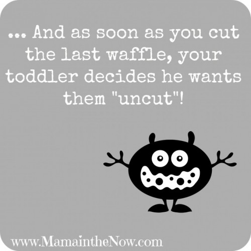 Toddler Dilemma - Every Time