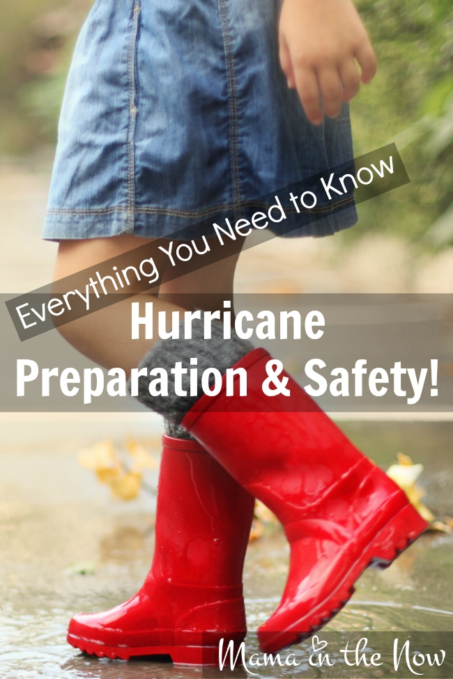 Everything You Need to Know About Hurricane Preparation and Safety for your family, your home and your pets! This is a great one-stop resource with printables, shopping lists and safety advice