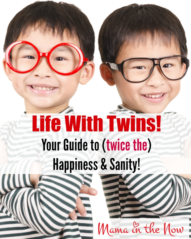 Life with Twins! Your guide to twice the happiness and sanity!
