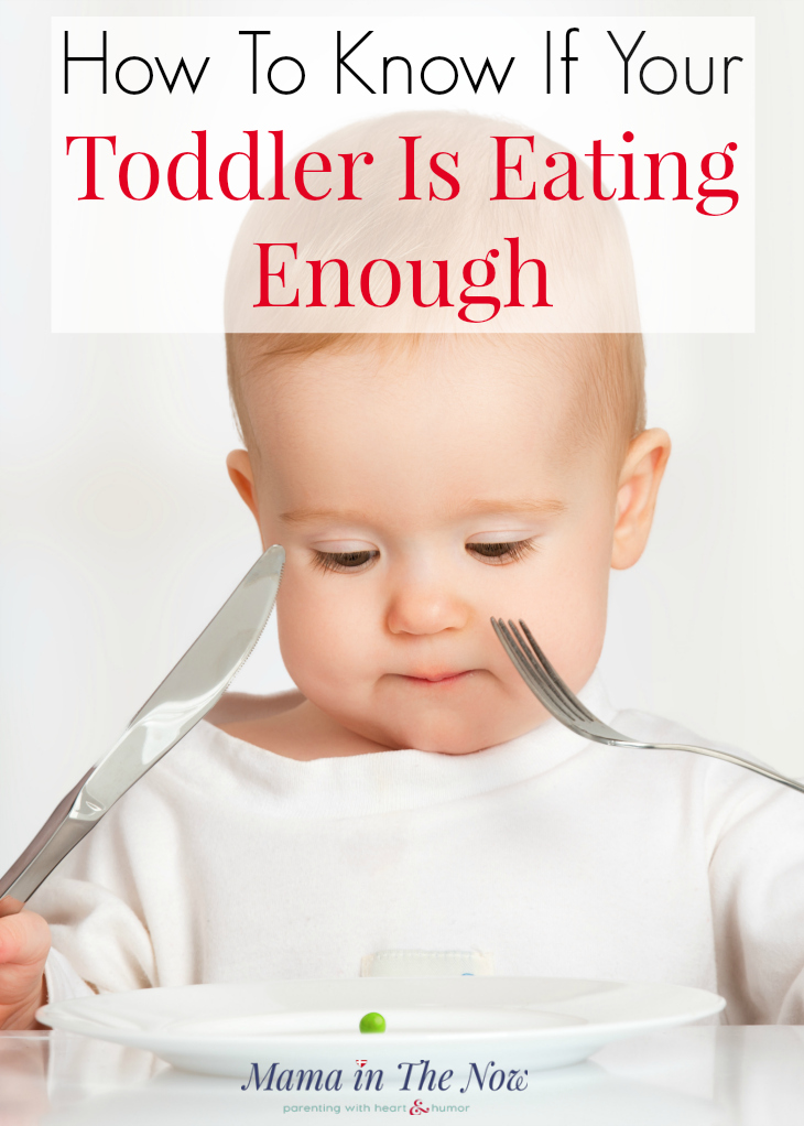 Is your toddler eating enough? Worrying about your toddler's diet can be stressful. Feel confident that your picky eater is getting enough to eat with this incredible tool.