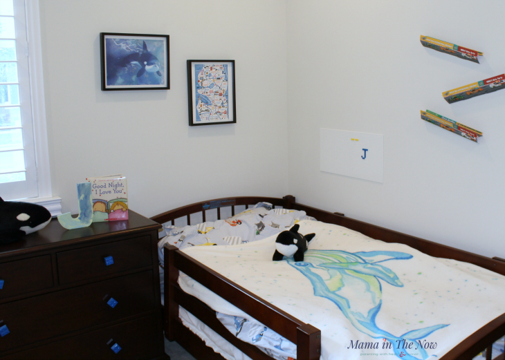 Our Pacific North West whale inspired room wouldn't be complete without stuffed Orca whales for the kids! Huge hits!